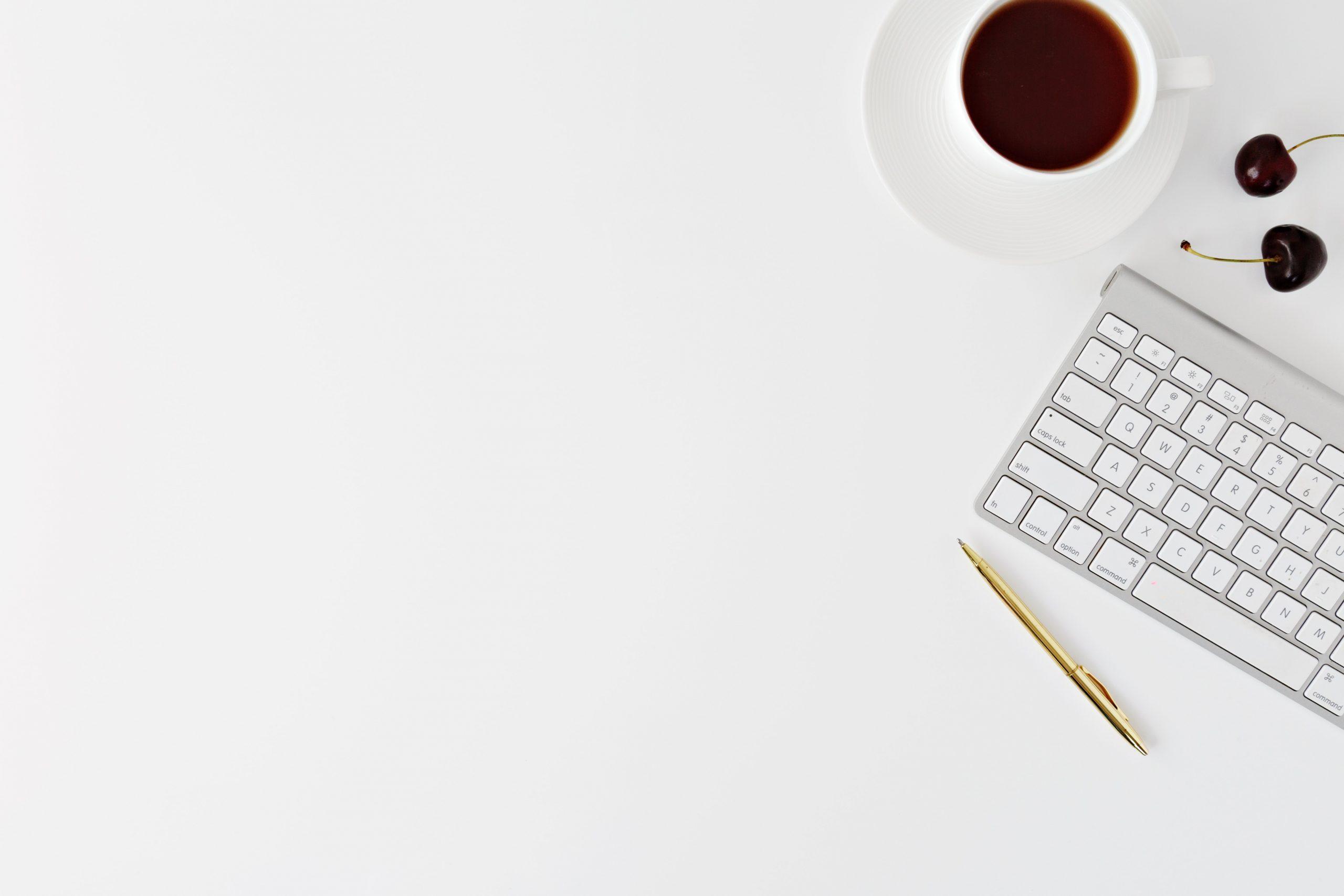WordPress Designer
